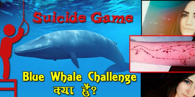 suicide game blue whale challenge